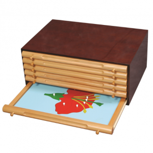 Botany Leaf Cabinet with Large Puzzles (Premium Quality)