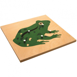 Parts of a Frog Puzzle (Premium Quality)